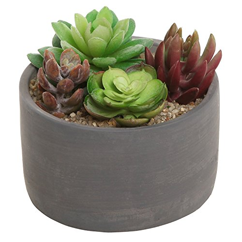 Small Modern Round Indoor Gray Cement Flower Planter Pot / Outdoor Succulent & Cactus Plant Container
