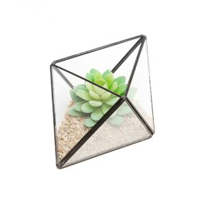 Succulent-Air-Plant-Diamond-Planter