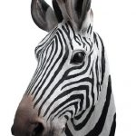 Zebra Head Wall Mount Bust