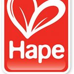 Hape Take-Along Activity Box