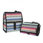 Fiesta PackIt Freezable Lunch Bag