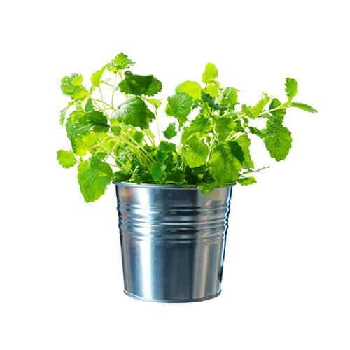Galvanized-Steel-Flower-Plant-Pots-Set