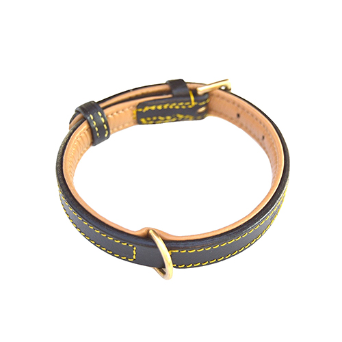 leather-padded-dog-collar